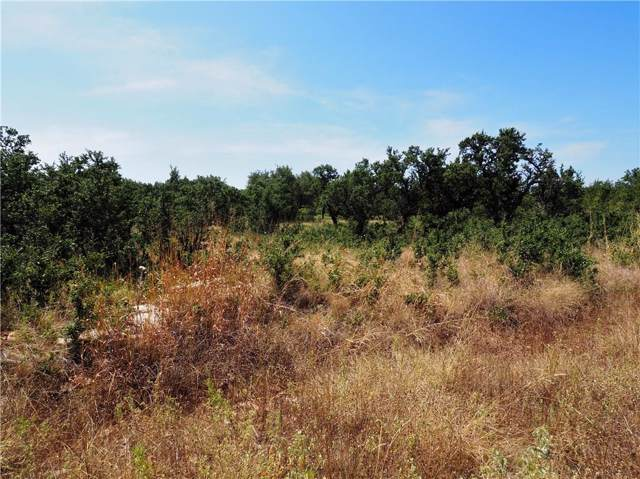 Lot 103 Falcon Drive, Brownwood, TX 76801 (MLS #14156434) :: The Welch Team