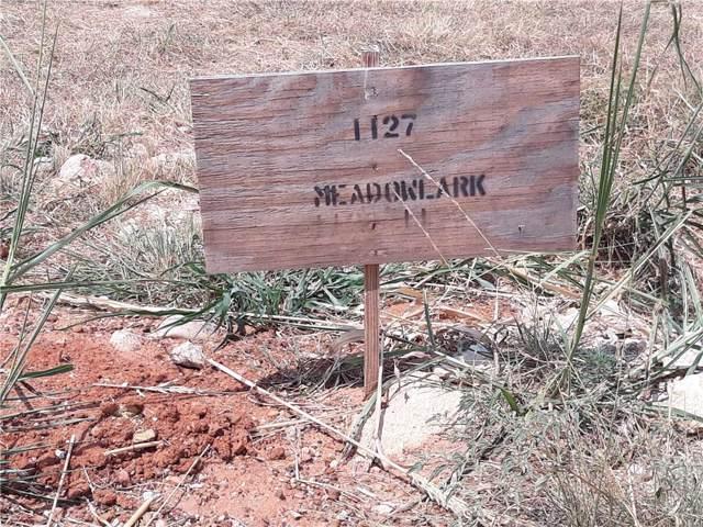 1127 Meadowlark Drive, Rhome, TX 76078 (MLS #14157741) :: Trinity Premier Properties