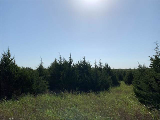 000 Private Road 1162, Farmersville, TX 75442 (MLS #14160400) :: All Cities Realty