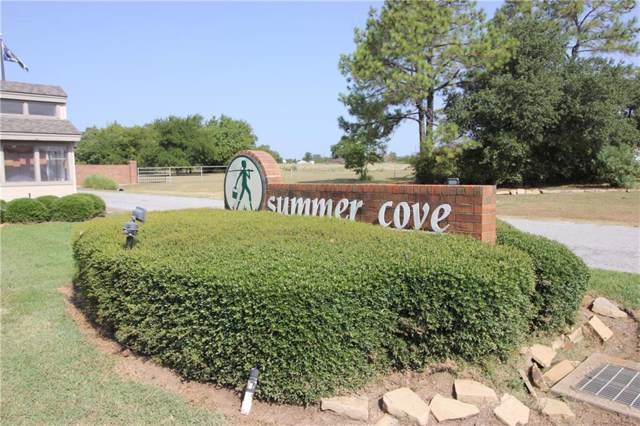 103 Summer Place Circle, Pottsboro, TX 75076 (MLS #14160569) :: The Paula Jones Team | RE/MAX of Abilene