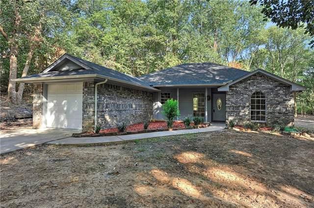 1537 County Road 3040, Bonham, TX 75418 (MLS #14161626) :: The Real Estate Station