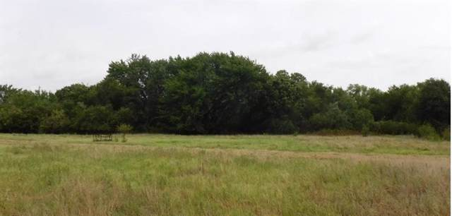 TBD County Road 4196, Decatur, TX 76234 (MLS #14162802) :: The Heyl Group at Keller Williams