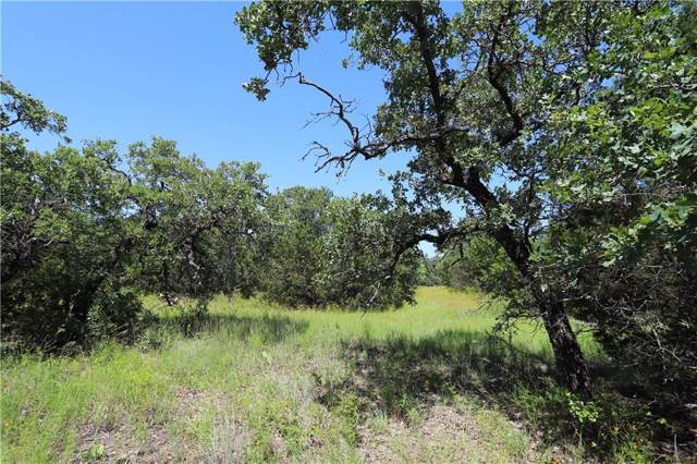 A13 Glenhollow Drive, Gordon, TX 76453 (MLS #14165335) :: All Cities Realty