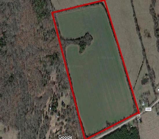 1981 County Road 3300, Avery, TX 75554 (MLS #14165975) :: The Real Estate Station
