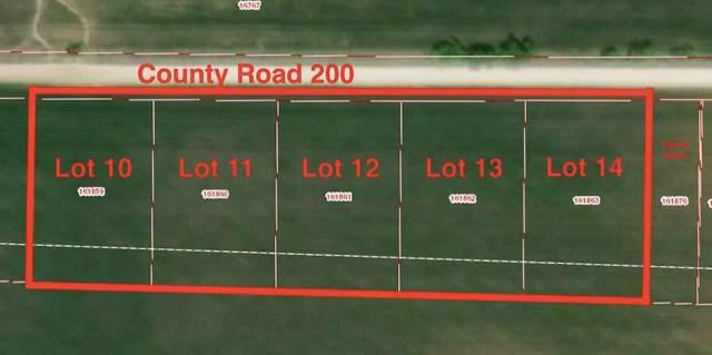 Lot 11 Cr 200, Valley View, TX 76272 (MLS #14166000) :: The Tierny Jordan Network
