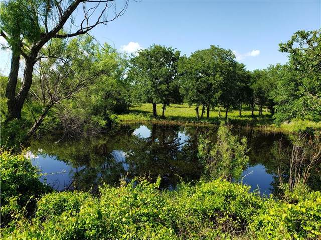 25038 County Road 428, Rising Star, TX 76471 (MLS #14166068) :: The Chad Smith Team