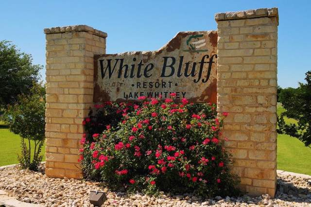 1630 White Bluff Drive, Whitney, TX 76692 (MLS #14166615) :: The Good Home Team