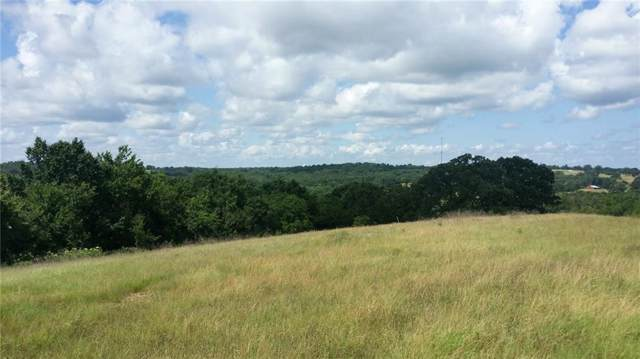 Lt 172 Lago Vista Drive, Athens, TX 75752 (MLS #14167660) :: Real Estate By Design