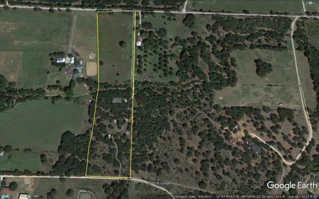 6396 Dobbs Valley Road, Millsap, TX 76066 (MLS #14168017) :: Real Estate By Design