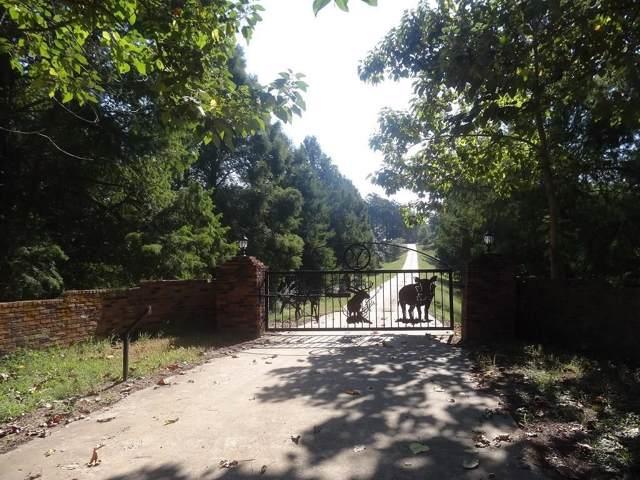 588 Fm 3384, Pittsburg, TX 75686 (MLS #14169255) :: Ann Carr Real Estate