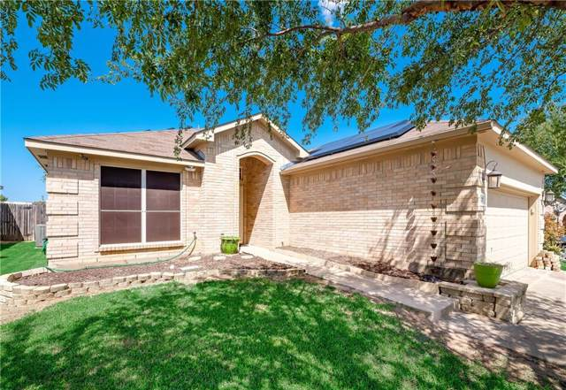 337 Shadow Grass Avenue, Fort Worth, TX 76120 (MLS #14169697) :: Vibrant Real Estate