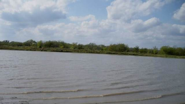 000 Co Road 143, Kaufman, TX 75142 (MLS #14169749) :: Bray Real Estate Group