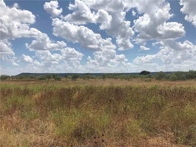 02 County Rd 365, Trent, TX 79561 (MLS #14171975) :: The Heyl Group at Keller Williams