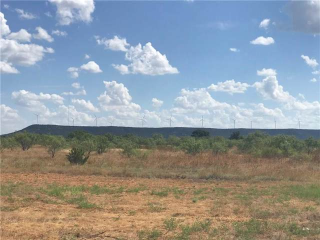 01 County Rd 365, Trent, TX 79561 (MLS #14172194) :: The Heyl Group at Keller Williams