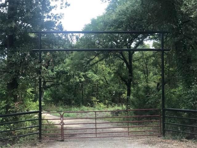 TBD County Rd 4020, Savoy, TX 75479 (MLS #14172408) :: Baldree Home Team