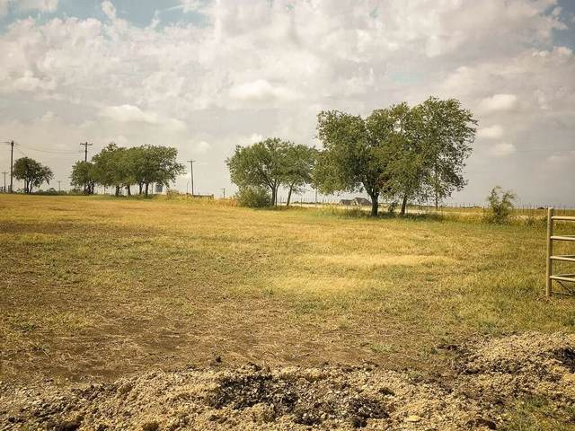 100 Bittersweet Trail, Weatherford, TX 76088 (MLS #14173653) :: All Cities Realty