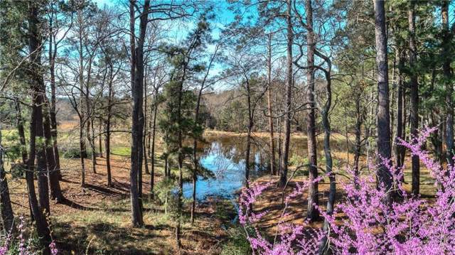 17042 County Road 3302, Brownsboro, TX 75756 (MLS #14174758) :: Frankie Arthur Real Estate