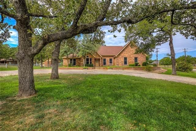 100 Woody Creek Drive, Springtown, TX 76082 (MLS #14176418) :: The Heyl Group at Keller Williams
