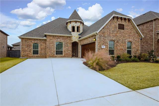 744 Sandbox Drive, Little Elm, TX 76227 (MLS #14177828) :: Robbins Real Estate Group