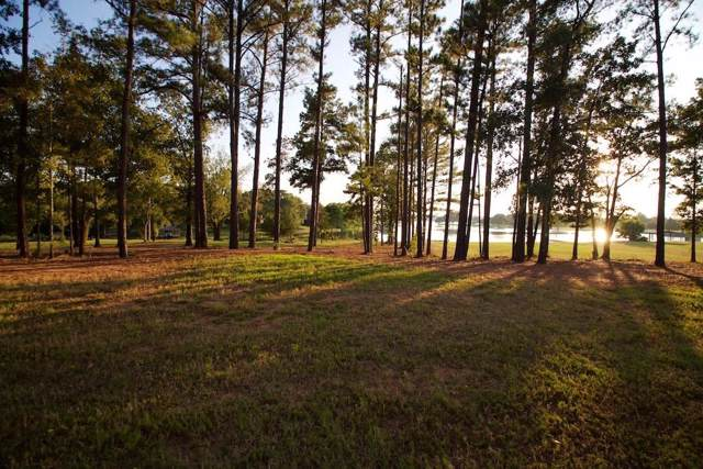 22240 Mallards Cove Ct, Bullard, TX 75757 (MLS #14177959) :: The Kimberly Davis Group