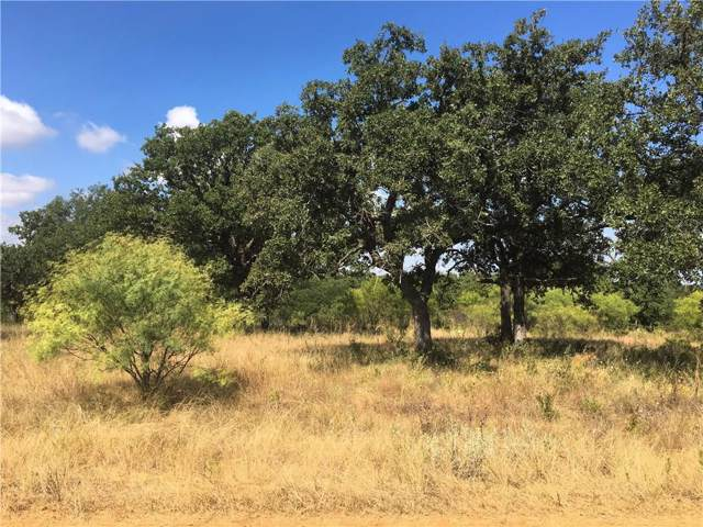 TBD54 Amy Drive, Brownwood, TX 76801 (MLS #14178624) :: The Juli Black Team