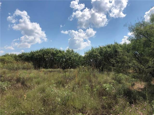 TBD County Road 418, May, TX 76857 (MLS #14178638) :: The Chad Smith Team
