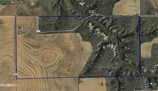 TBD County Rd 233, Rotan, TX 79546 (MLS #14179233) :: Century 21 Judge Fite Company