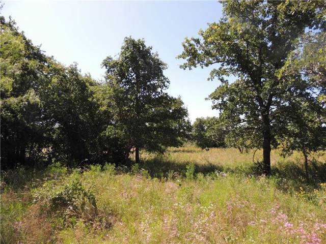 Tract1 Cr 3451, Paradise, TX 76073 (MLS #14179767) :: North Texas Team | RE/MAX Lifestyle Property