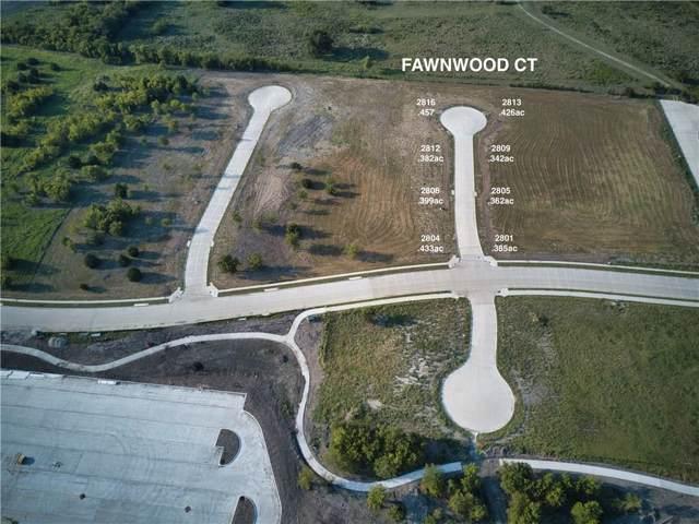 2812 Fawnwood Court, Sherman, TX 75092 (MLS #14180418) :: Team Hodnett