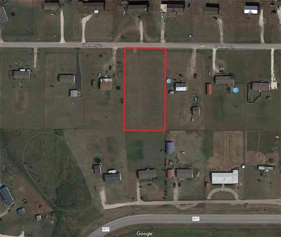 3317 Elderberry Lane, Joshua, TX 76058 (MLS #14180770) :: RE/MAX Town & Country