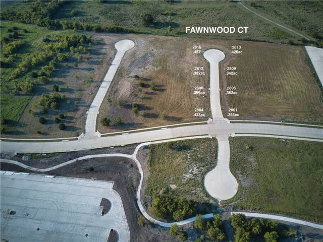 2805 Fawnwood Court, Sherman, TX 75092 (MLS #14180987) :: The Kimberly Davis Group