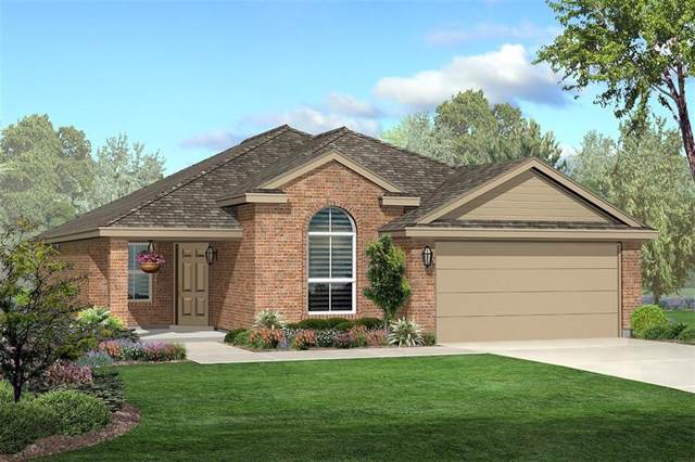 741 High Summit Trail, Fort Worth, TX 76131 (MLS #14181884) :: The Heyl Group at Keller Williams