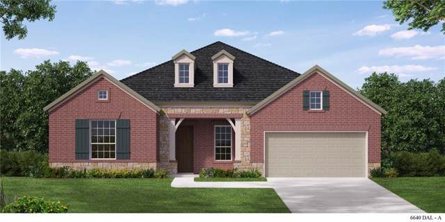 2507 Collier Street, Mansfield, TX 76063 (MLS #14181961) :: The Hornburg Real Estate Group