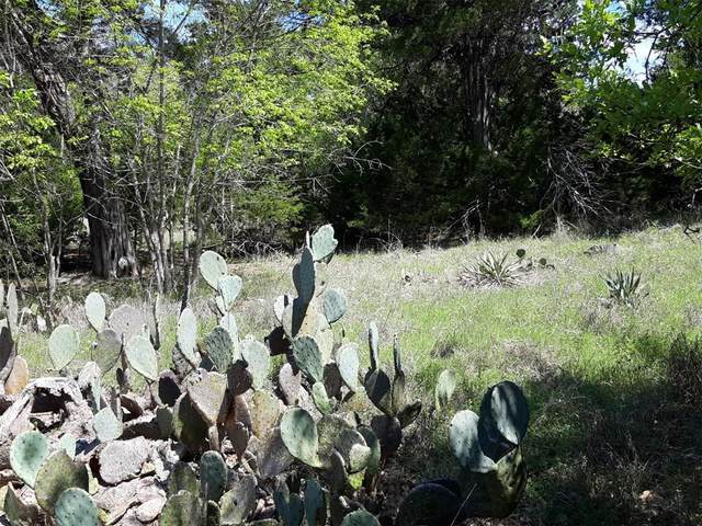 tbd County Rd 1541, Morgan, TX 76671 (MLS #14183268) :: The Hornburg Real Estate Group