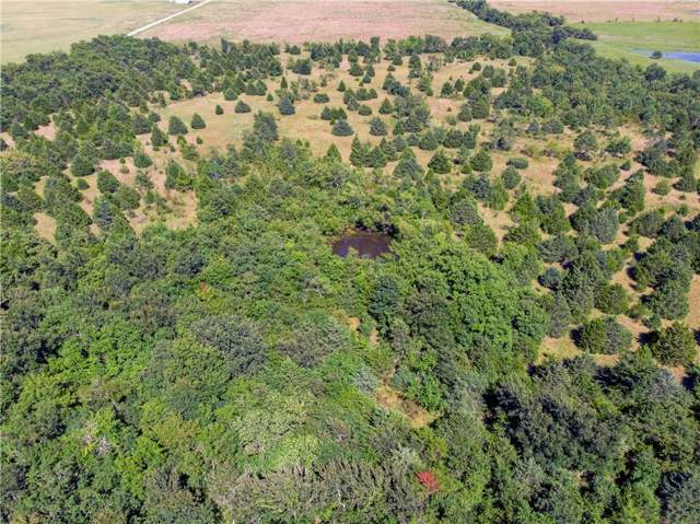 Lot 6 County Rd 4519, Wolfe City, TX 75496 (MLS #14184044) :: The Kimberly Davis Group