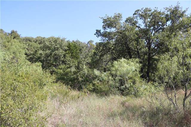 39R Hogg Mountain Road, Mineral Wells, TX 76067 (MLS #14185702) :: The Kimberly Davis Group