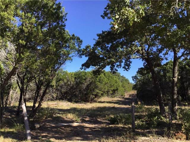 TBD Fm 202, Glen Rose, TX 76043 (MLS #14186255) :: RE/MAX Town & Country