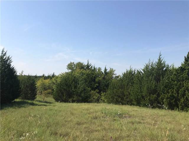 00 County Road 672, Blue Ridge, TX 75424 (MLS #14186771) :: RE/MAX Town & Country