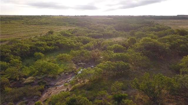 TBD Harmel Road, Megargel, TX 76370 (MLS #14187700) :: The Hornburg Real Estate Group