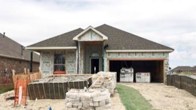 2945 Open Range Drive, Celina, TX 75009 (MLS #14188978) :: The Heyl Group at Keller Williams