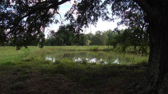 7940 Texas Highway 37 S, Deport, TX 75435 (MLS #14189055) :: RE/MAX Town & Country