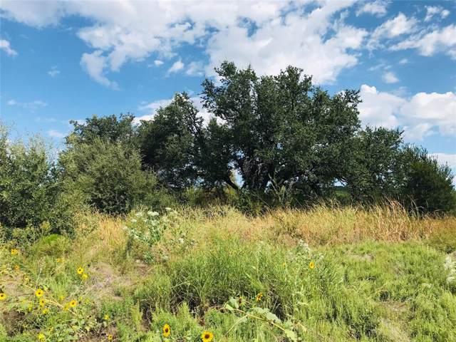 Lot1025 Cinnamon Teal, Possum Kingdom Lake, TX 76449 (MLS #14189844) :: Lynn Wilson with Keller Williams DFW/Southlake