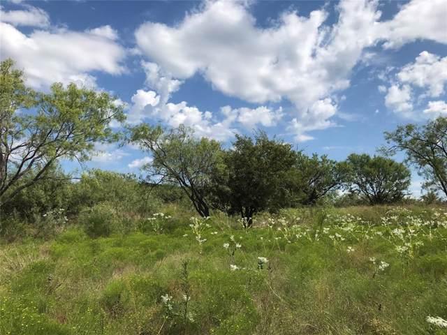 Lot1033 Cinnamon Teal, Possum Kingdom Lake, TX 76449 (MLS #14189864) :: Kimberly Davis & Associates