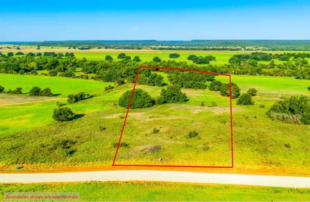 Lot 4 Soda Springs Road, Millsap, TX 76066 (MLS #14191935) :: Lynn Wilson with Keller Williams DFW/Southlake