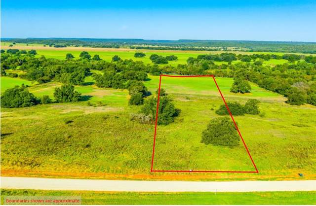 Lot 5 Soda Springs Road, Millsap, TX 76066 (MLS #14191943) :: Lynn Wilson with Keller Williams DFW/Southlake