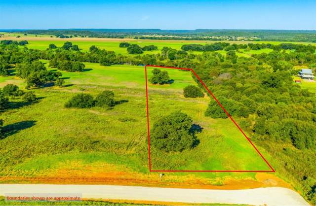 Lot 6 Soda Springs Road, Millsap, TX 76066 (MLS #14191956) :: Lynn Wilson with Keller Williams DFW/Southlake