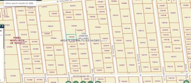 Lot 193 Ivanhoe, Gordonville, TX 76245 (MLS #14193090) :: The Kimberly Davis Group