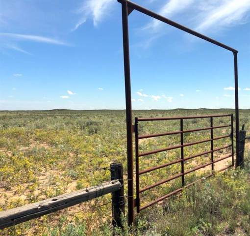 000 State Hwy 214, Morton, TX 79346 (MLS #14194119) :: RE/MAX Town & Country