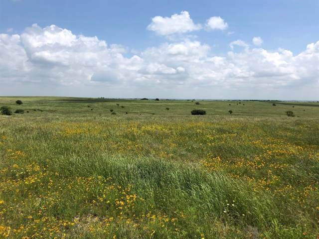 TBD County Rd 4511, Decatur, TX 76234 (MLS #14195221) :: Lynn Wilson with Keller Williams DFW/Southlake