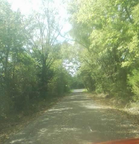 000 County Road 2431, Como, TX 75431 (MLS #14195807) :: Team Hodnett